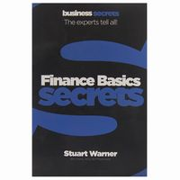 Finance Basics Secrets